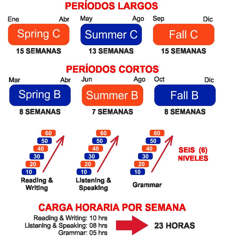 Periodos de Inglés de University of Florida - ELI - Estudia En Florida