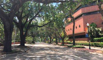 University of Florida - Campus
