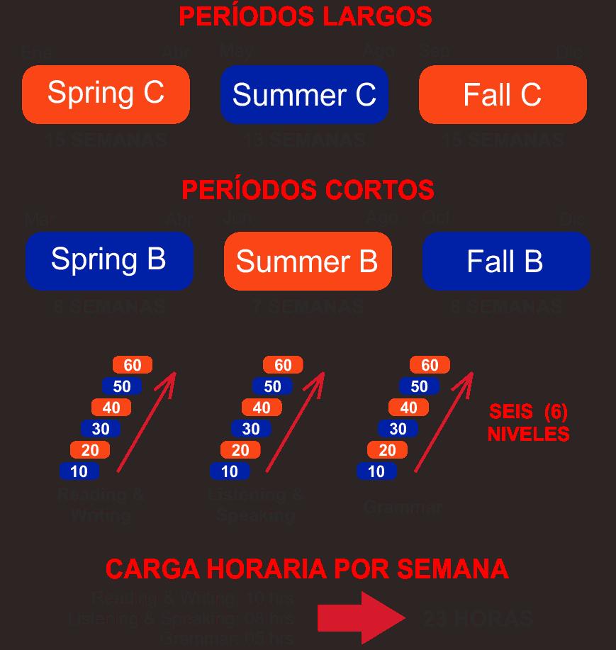 Periodos de cursos de Inglés de University of Florida. ELI - Estudia En Florida